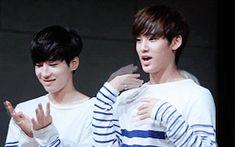 Wonwoo & Mingyu pt.5 #gwiyomi