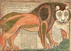 Middeleeuwse Wikiped