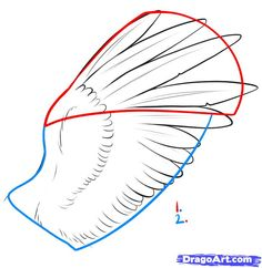 how-to-draw-feathers-step-1_1_000000033359_5.jpg 727×748 pixels