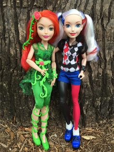 https://flic.kr/p/EfyZxY | DC Super Hero Girls | Poison Ivy & Harley Quinn