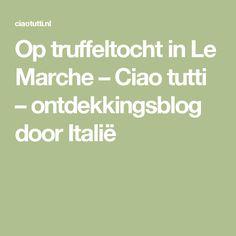 Op truffeltocht in Le Marche – Ciao tutti – ontdekkingsblog door Italië