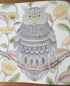 From Millie Marotta's Tropical World Coloring Book. #milliemarotta…