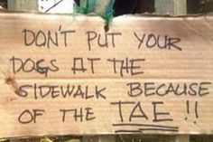 dont put your dogs at the sidewalk beacause of the tae! Jkjkjk don't kill me Filipino Funny, Tagalog, Pinoy, Funny Pictures, Funny Pics, Jokes, Lol, Food Menu, Board