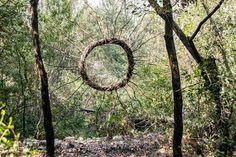 Fantastic Forest by Spencer Byles_5