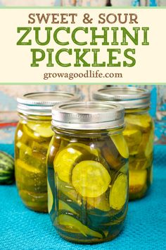 Pickle that big harvest of zucchini from your vegetable garden with this easy sweet and sour zucchini pickles canning recipe. These sweet and sour zucchini pickles are perfect on hamburgers and sandwiches, but also great snacked right out of the jar. Click through for the full recipe to make and can zucchini pickles. Preserving Zucchini, Canned Zucchini, Zucchini Pickles, Pickled Zucchini, Sweet And Sour Pickles Recipe, Sweet Pickles, Sweet Pickled Squash Recipe, Sweet Relish Recipe Canning, Canning Squash