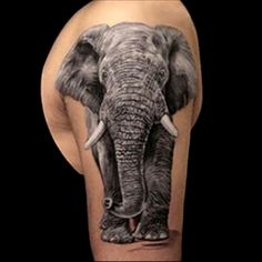 Resultado de imagen para tatuaje de elefante barritando