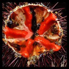 Garoina. Campanya gastronòmiica Garoinada. Foto Mari C.