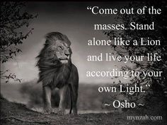 Best 100 Osho Quotes On Life, Love, Happiness, Words Of Encouragement I don't believe in a god as a person, I believe in godliness as a quality. - Osho Q Osho Quotes On Life, Positive Quotes, Success Quotes, Spiritual Quotes, Spiritual Awakening, Success Mantra, Positive Traits, Godly Quotes, Mindset Quotes