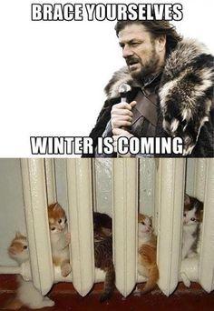 Get a good spot next to the heater