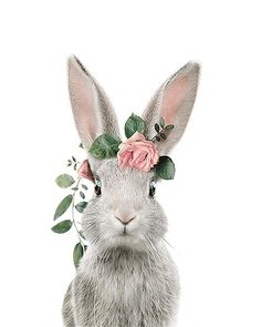 Bunny Art, Cute Bunny, Lapin Art, Bunny Painting, Rabbit Art, Baby Bunnies, Animal Wallpaper, Watercolor Animals, Cute Illustration