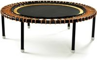 Exercising on a mini-trampoline (rebounder) is particularly stimulating to the immune system | Five minutes once or twice a day will suffice. Exercise adds oxygen, a vital partner, to your system. Oxygen helps kill unfriendly bacteria and stimulates you physically and mentally. A gentle bounce on your mini-tramp, even when you feel weak, is very valuable. There is a big difference in the quality of mini-tramps or rebounders.