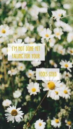 Fools gold//one direction