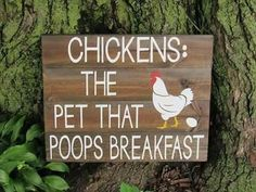 Chicken Coop Signs, Chicken Humor, Building A Chicken Coop, Chicken Coops, Funny Chicken, Chicken Houses, Chicken Race, Diy Signs, Funny Signs
