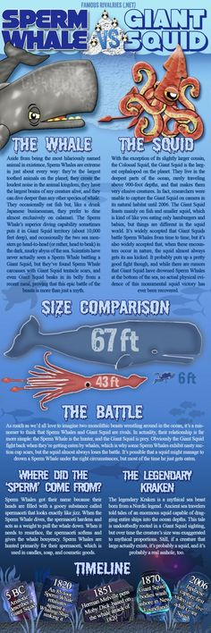Famous Rivalries: Sperm Whale vs. Giant Squid. I'm pulling for the squid...he seems like a real bad ass and the whale's just a jerk with jizz on its head.