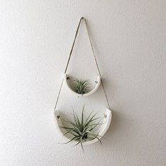 """Developed to showcase each air plant's individual beauty, thisair plant cradle isthe ideal balance between sculpture and functionality. Each cradle is completely hand crafted out of gorgeous unglazed natural white earthenware clay that is slow dried for maximum strength and fired to 1945°. There is a hole in the center that measures approx 1"""" wide for securing your air plant if it has a bulb. Make a stunning display individually or in groups and can be hung on the wall, in a window..."""