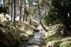 A Road Trip Through The Catalan Pyrenees – Jan Phoenix