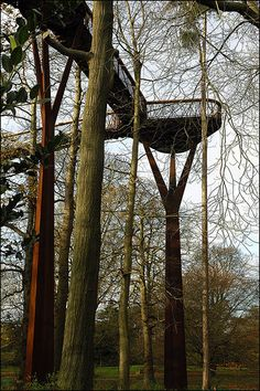 The Treetop Walkway at Kew Gardens designed by Marks Barfield Architects Tree Tent, Lookout Tower, Cool Tree Houses, Corten Steel, Canopy Tent, Kew Gardens, How To Level Ground, Natural Texture, Walkway
