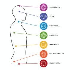 How to Integrate the Chakras into a Yoga Class Bikram Yoga, Ashtanga Yoga, Vinyasa Yoga, Yin Yoga, Chakra System, 7 Chakras, Chakra Symbole, Body Chart, Crystals