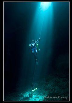 西オーストラリア・パースの海の物語: PADIサイドマウントダイバースペシャリティーコース