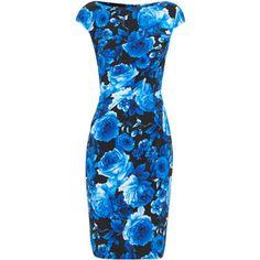 Talbot Runhof Dolan rose print stretch silk dress