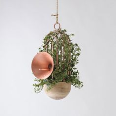 """Made of oak wood and copper, this hanging bird feeder by #katiatolstykh holds a plant and a speaker, to project the #bird songs."" Photo taken by @designmilk on Instagram, pinned via the InstaPin iOS App! http://www.instapinapp.com (01/06/2016)"