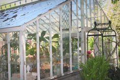 Beautiful Summer Vintage Greenhouse