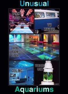 5 Really Unusual Aquariums | Dance floor * Wedding Cake * Ceiling * VW Minibus * Living Room Floor