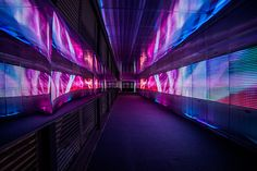 repulsed:  the pixels crossing: sensory tunnel by miguel chevalier