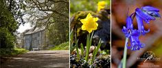 Some wonderful sights to be seen at this time of year around Mount Juliet Estate.