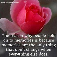 Memories rose