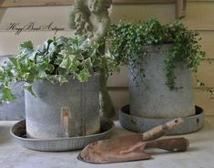 Old galvanized chicken feeders turned planters! Fun garden stuff!