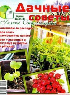 Дачные советы Галины Старосельцевой №4 2016 скачать бесплатно