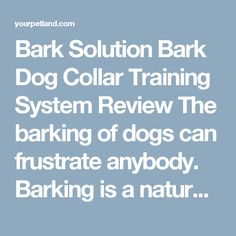 Bark Solution Bark Dog Collar Training System Review The barking of dogs can frustrate anybody. Barking is a natural phenomenon through which, dogs communicate with each other and also express their feelings. Training Collar, Pet Care Tips, Natural Phenomena, Blog Writing, Health Advice, Pet Health, Dog Love, Your Pet, Funny Memes
