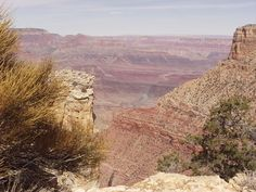 You will find great Phoenix, Arizona house rentals in the East Valley at reasonable prices. Grand Canyon In March, Spaces, Nature, Travel, Naturaleza, Viajes, Destinations, Traveling, Trips