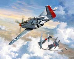 I'll Be Darned, by Roy Grinnell (P-51D Mustang & Fw 190A)