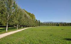 Golena sinistra del Parco Fluviale del Serchio