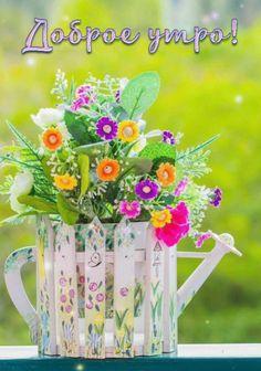 С Днем Рождения Дочка, Счастливый, Спокойной Ночи, Buen Dia, Сообщения, Мысли, Цветы, Фотография, День Рождения