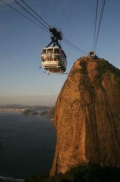 Brasilianische große Hahn-Tranny