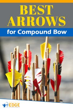 Best Arrows for Compound Bow! Wooden hunting arrows, hunting arrow heads, best hunting arrows, how to make hunting arrows, hunting arrow tips, hunting arrow design, Arrow Hunting, archery hunting, archery hunting gear, archery hunting tips, arrows hunting guide, archery hunting tips, Archery target stand, archery range, archery hunting, archery quotes, archery equipment, archery women, archery backstop, archery photography, horse archery, archery arrows hunting. #arrowshunting
