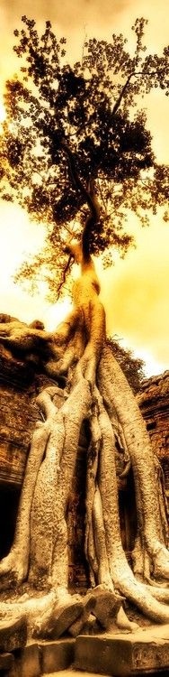 | Trey Ratcliff via Fabian Bernal