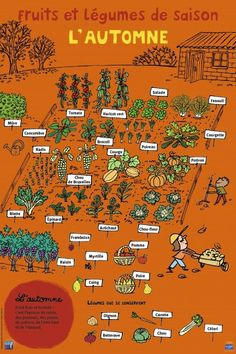 Potager gardening stress attraction, utility and diversity by planting vegetables and flowers in groups potager garden ideas French Education, Permaculture Design, Potager Garden, Balcony Garden, French Classroom, French Language Learning, Foreign Language, French Food, French Stuff