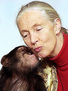 Jane Goodall!