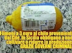 Abbiamo i migliori #limoni del mondo,ma li importiamo dal Cile facendo fallire le aziende siciliane… http://jedasupport.altervista.org/blog/attualita/limoni-importati-cile-aziende-sicilia/