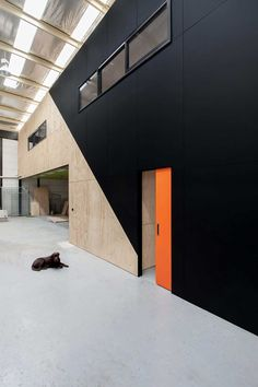 Warehouse Conversion by Doherty Design Studio | Yellowtrace color pop