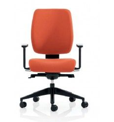 Made to Measure Chairs. Individual Customised Back Care Chairs ensuring good lumbar support, neck support, correct seat height & depth to aid circulation High Back Office Chair, Mesh Office Chair, Saddle Chair, Kneeling Chair, Mesh Chair, Sitting Positions, Ireland Homes, Workplace Design, Chairs