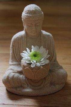 Items similar to Fine Art Photo of Buddha in Samadhi on Etsy Lotus Buddha, Art Buddha, Buddha Kunst, Buddha Buddhism, Buddha Peace, Gautama Buddha, Ganesha, Buda Zen, Deco Zen