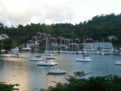 Capella Marigot Bay in St. Lucia