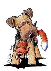 Welsh Terrier with a toy fox. Dog breed illustration created in India inks and color pencils. By KiniArt on www.totalartsoul.com