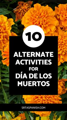Are you looking for an alternative assignment for Día de los Muertos for your students? Maybe a parent, guardian, or student requested a different activity instead of Day of the Dead in your classroom? Check out this list of 10 ideas you could do instead of Día de los Muertos in your lessons or for an independent project your student could do on their own for research while your middle or high school Spanish class is studying el Día de los Muertos, the Day of the Dead. Click to learn more! Middle School Spanish, Spanish Class, Teaching Spanish, Travel Activities, Activities To Do, Monarch Butterfly Migration, Famous Hispanics, Research Poster, Writing A Persuasive Essay