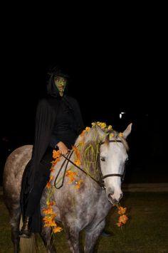 Halloween Costume Class as Wildwych Lantana